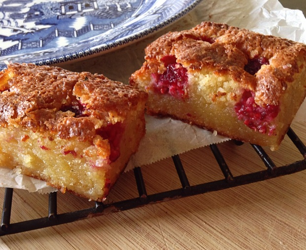 Raspberry, Almond and Coconut Slice 1