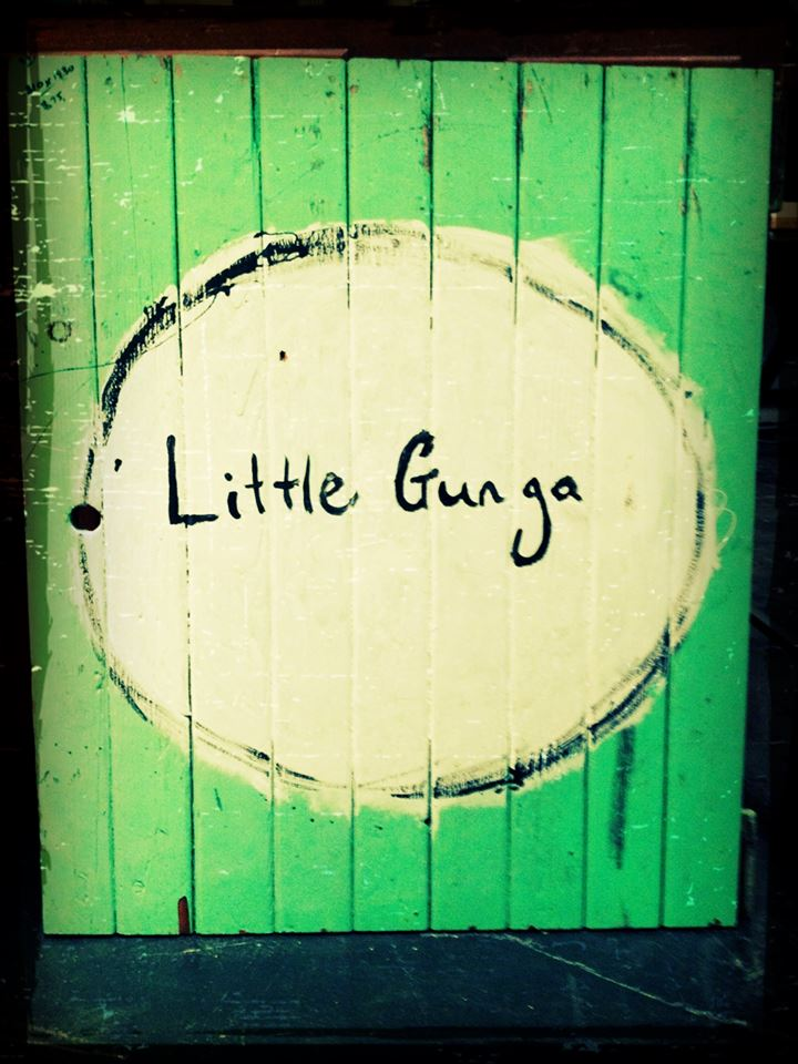 Little Gunga, Milton NSW